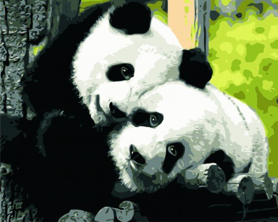 Panda Kærlighed