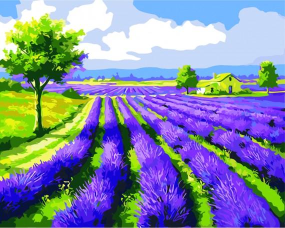 Lavendel Marken