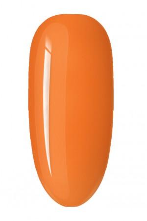 Pumpkin 15ml · 53